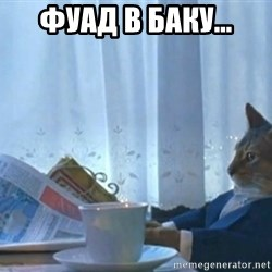 newspaper cat realization - Фуад в Баку...