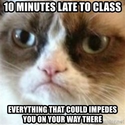 angry cat asshole - 10 minutes late to class everything that could impedes you on your way there