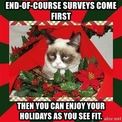 GRUMPY CAT ON CHRISTMAS - end-of-course surveys come first then you can enjoy your holidays as you see fit.
