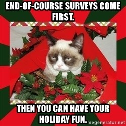 GRUMPY CAT ON CHRISTMAS - End-of-course surveys come first. Then you can have your holiday fun.