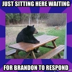 waiting bear - just sitting here waiting for brandon to respond