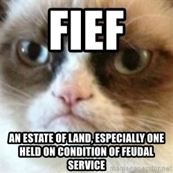 angry cat asshole - fief an estate of land, especially one held on condition of feudal service