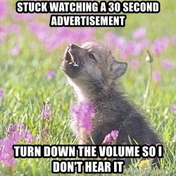 Baby Insanity Wolf - stuck watching a 30 second advertisement turn down the volume so i don't hear it