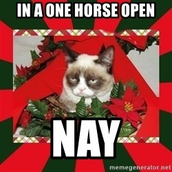 GRUMPY CAT ON CHRISTMAS - In a one horse open nay