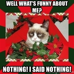 GRUMPY CAT ON CHRISTMAS - WELL WHAT'S FUNNY ABOUT ME? NOTHING! I SAID NOTHING!