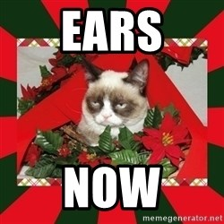 GRUMPY CAT ON CHRISTMAS - EARS NOW