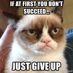 Grumpy Cat 2 - If at first you don't succeed... just give up