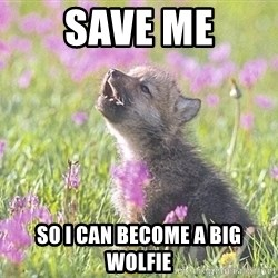 Baby Insanity Wolf - Save me so i can become a big wolfie
