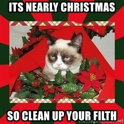 GRUMPY CAT ON CHRISTMAS - Its nearly Christmas  so clean up your filth