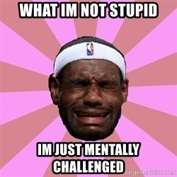 LeBron James - what im not stupid im just mentally challenged