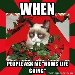 """GRUMPY CAT ON CHRISTMAS - when people ask me """"hows life going"""""""
