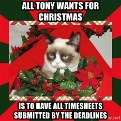 GRUMPY CAT ON CHRISTMAS - All Tony wants for Christmas is to have all timesheets submitted by the deadlines