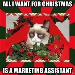 GRUMPY CAT ON CHRISTMAS - ALL I WANT FOR CHRISTMAS IS A MARKETING ASSISTANT
