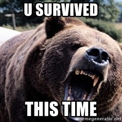 Bear week - u survived this time