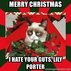 GRUMPY CAT ON CHRISTMAS - merry christmas I hate your guts, Lily Porter