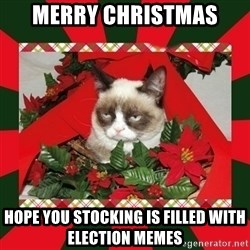 GRUMPY CAT ON CHRISTMAS - Merry Christmas Hope you stocking is filled with election memes