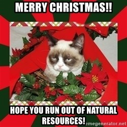GRUMPY CAT ON CHRISTMAS - Merry Christmas!! Hope you run out of natural resources!