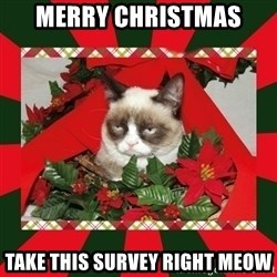 GRUMPY CAT ON CHRISTMAS - Merry Christmas Take this survey right meow