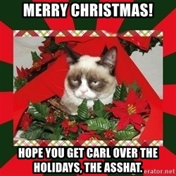 GRUMPY CAT ON CHRISTMAS - merry christmas! hope you get carl over the holidays, the asshat.