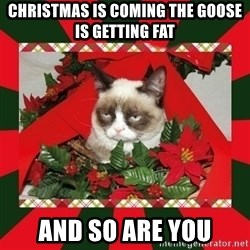 GRUMPY CAT ON CHRISTMAS - christmas is coming the goose is getting fat and so are you