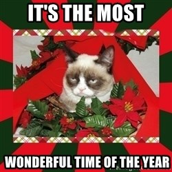 GRUMPY CAT ON CHRISTMAS - IT's THE MOST  Wonderful time of THE year