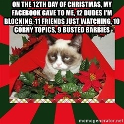 GRUMPY CAT ON CHRISTMAS - On the 12th day of christmas, my Facebook gave to me, 12 dudes I'm blocking, 11 friends just watching, 10 corny topics, 9 busted Barbies