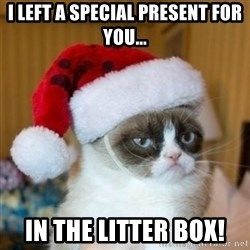 Grumpy Cat Santa Hat - I LEFT A SPECIAL PRESENT FOR YOU... IN THe litter box!