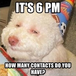 Troll dog - It's 6 PM How many contacts do you have?