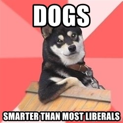 Cool Dog - dogs smarter than most liberals