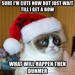 Grumpy Cat Santa Hat - Sure I'm cute now but just wait till I get a bow What will happen then dunmer