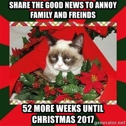 GRUMPY CAT ON CHRISTMAS - Share the good news to annoy family and freinds 52 more weeks until christmas 2017