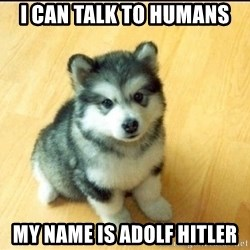 Baby Courage Wolf - i can talk to humans my name is adolf hitler