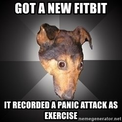 Depression Dog - Got a new Fitbit It recorded a panic attack as exercise
