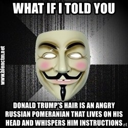 Anonymous memes - What if I told you Donald Trump's hair is an angry Russian Pomeranian that lives on his head and whispers him instructions