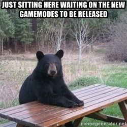 Patient Bear - Just sitting here waiting on the new gamemodes to be released
