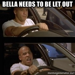 Vin Diesel Car - BELLA NEEDS TO BE LET OUT
