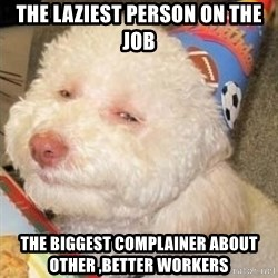 Troll dog - the laziest person on the job the biggest complainer about other ,better workers