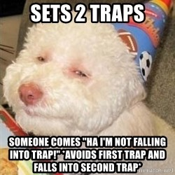 """Troll dog - SETS 2 TRAPS SOMEONE COMES """"ha i'm not falling into trAP!"""" *AVOIDS FIRST TRAP AND FALLS INTO SECOND TRAP*"""