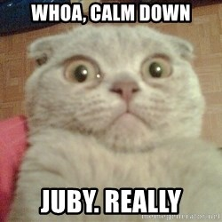 GEEZUS cat - Whoa, calm down Juby. really