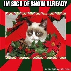 GRUMPY CAT ON CHRISTMAS - Im sick of snow already