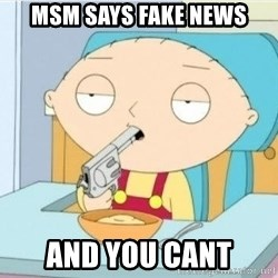 Suicide Stewie - msm says fake news and you cant