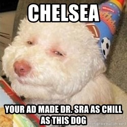 Troll dog - Chelsea  your ad made Dr. Sra as chill as this dog