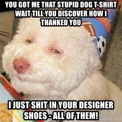 Troll dog - You got me that stupid Dog T-Shirt wait till you discover how I thanked you I just shit in your designer shoes - all of them!