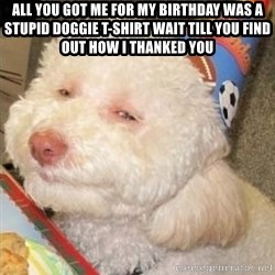 Troll dog - All you got me for my birthday was a stupid doggie t-shirt wait till you find out how i thanked you