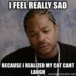 Sad Xzibit - i feel really sad because i realized my cat cant laugh