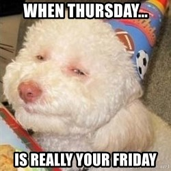 Troll dog - when thursday... is really your friday