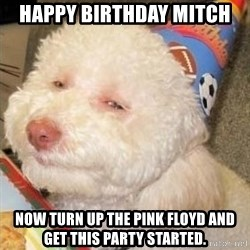 Troll dog - Happy Birthday Mitch Now Turn up the Pink Floyd and get this party started.