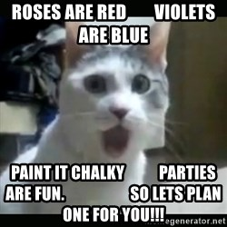 Surprised Cat - Roses are red        Violets are blue Paint it chalky           parties are fun.                     so lets plan one for you!!!