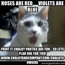 Surprised Cat - roses are red      violets are blue paint it chalky parties are fun... so lets plan one for you!   www.chalkyandcompany.com/chalkycowgirl