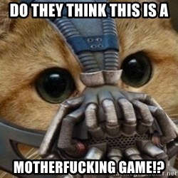 bane cat - Do they think this is a motherfucking game!?